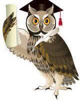 foghlaimid owl